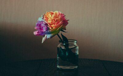 Unraveling the Queer Memoir