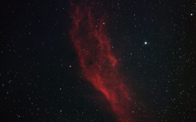 Entity in the Nebula